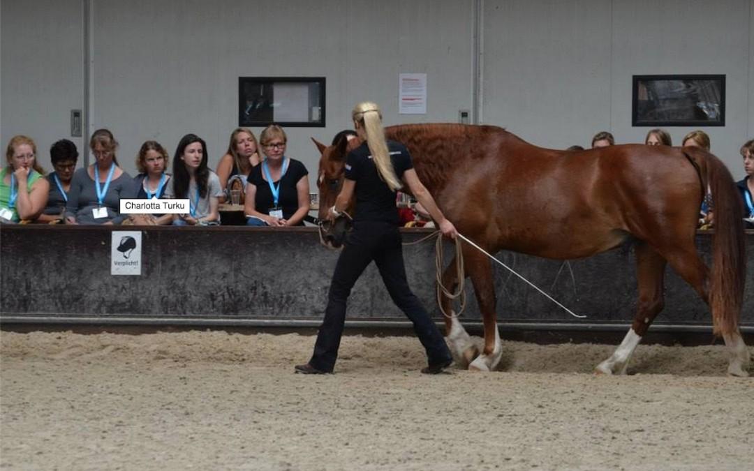 Opiskelemassa uutta Hollannissa – Straightness Training Mastery