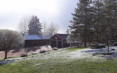 Kyrklund Ypäjällä – olenko ihan kukkahattutäti?