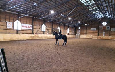 Hevosjooga ja jooga